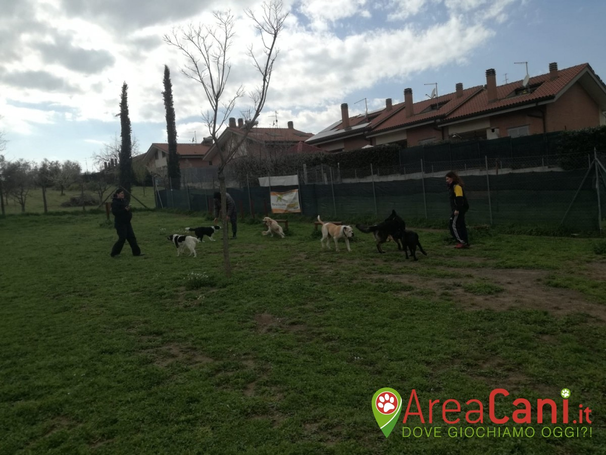 Dog Park Roma - Manu Dog Camp (private)