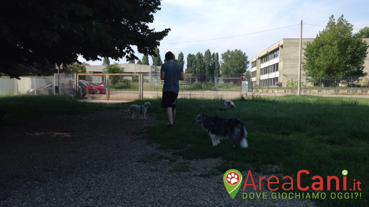 Dog Park Gallarate - via Covetta