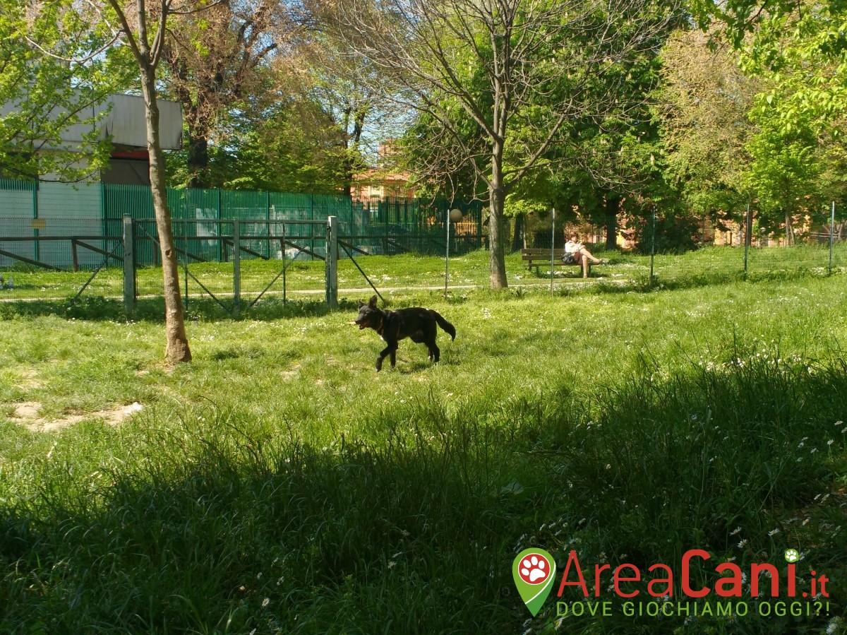 Dog Park Bologna - via Bentivogli