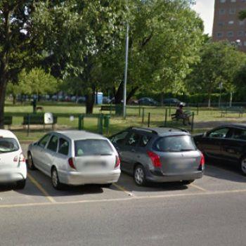 Dog Park Milano - Parco del Fanciullo 1