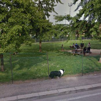 Dog Park Verona - via Eugenio Curiel